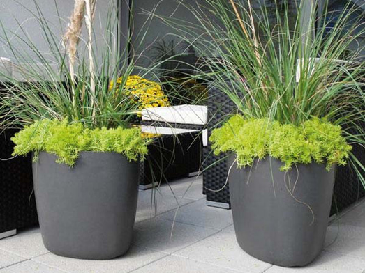 Jardini res pour potager urbain elle d coration for Plante exterieur pour balcon