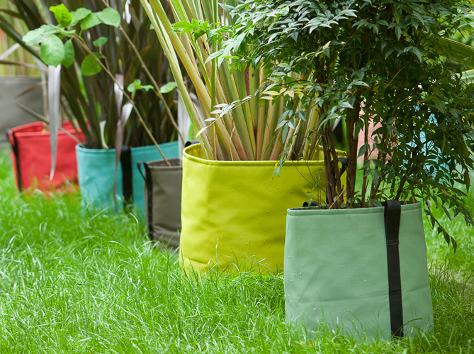 Nos id es pour un jardin gai et cosy elle d coration for Plantes decoration jardin