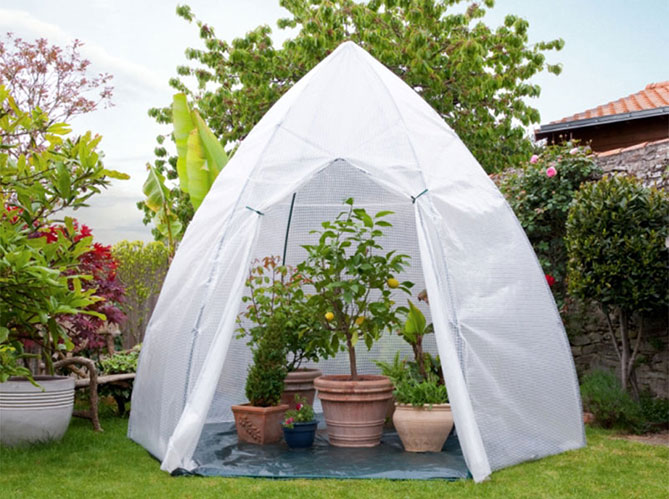 Installer une serre dans le jardin ou sur la terrasse - Ou planter la rhubarbe dans le jardin ...