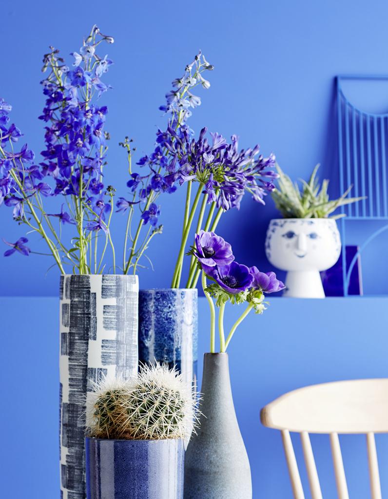 a chaque signe astrologique sa plante f tiche elle d coration. Black Bedroom Furniture Sets. Home Design Ideas