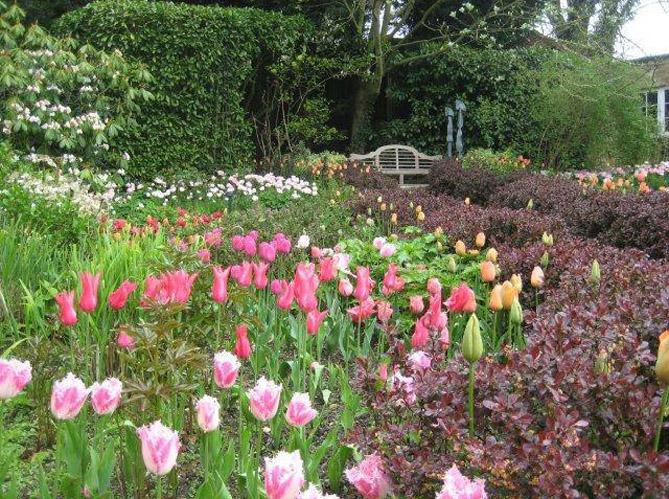 Visite d un jardin anglais dans la campagne britannique for Jardin anglais chalons en champagne