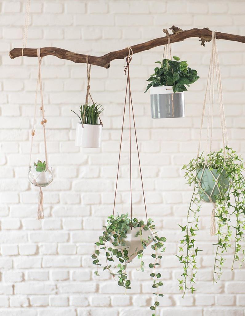 mettez en valeur vos plantes gr ce au pot suspendu elle d coration. Black Bedroom Furniture Sets. Home Design Ideas
