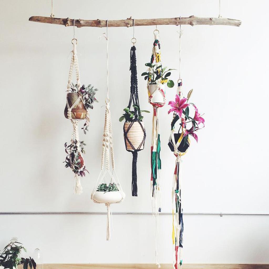 Tendance les plantes prennent de la hauteur elle for Tendance decoration porte