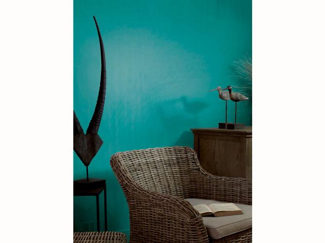Peinture salon plus de 20 couleurs canons pour le for Peinture murale bleu canard