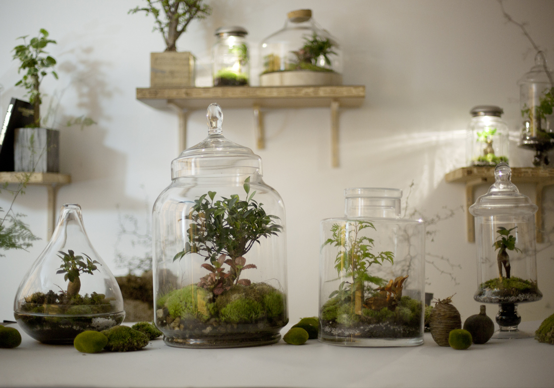 diy notre mode d emploi du terrarium elle d coration. Black Bedroom Furniture Sets. Home Design Ideas
