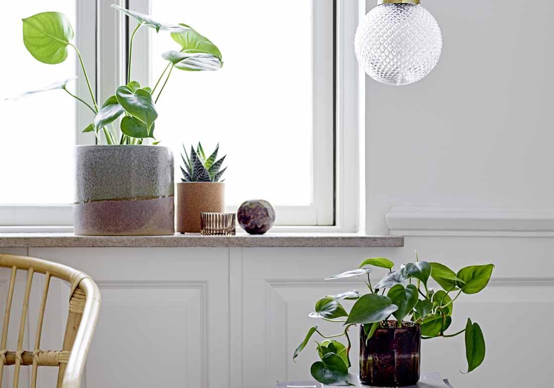 5 commandements pour mettre ko la pollution int rieure for Deco maison pratique