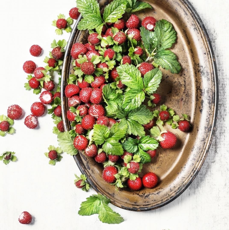 Fruits et l gumes de saison ao t d couvrez les fruits et l gumes de saison du mois d ao t - Quel legume planter en aout ...