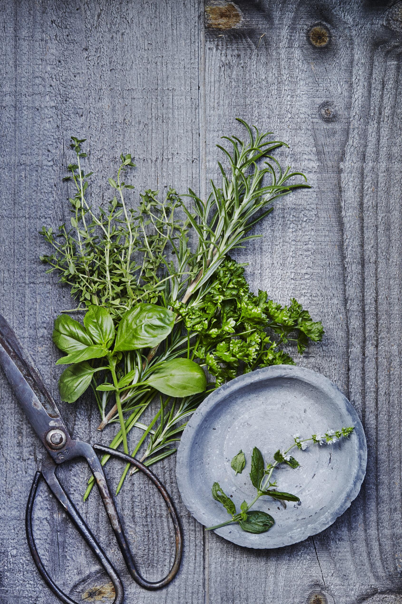 fruits et l gumes de saison mai herbes fra ches quels. Black Bedroom Furniture Sets. Home Design Ideas