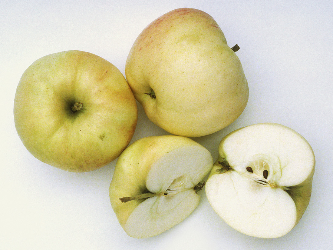 Quelle pomme pour gateau au pomme